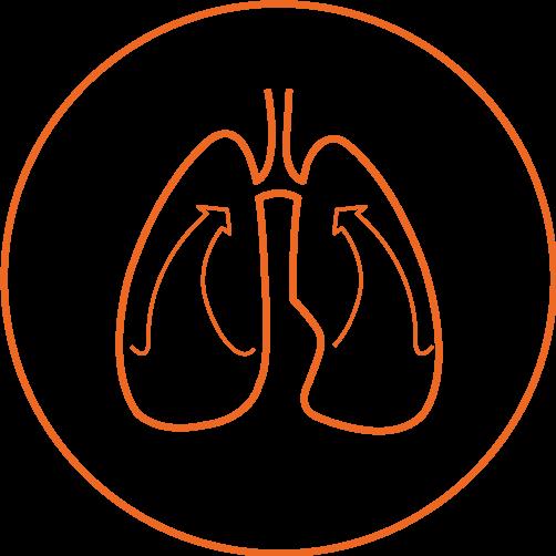 Icono EVONE 3 pulmones
