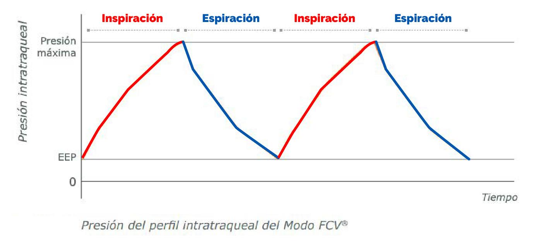 Gráfico EVONE