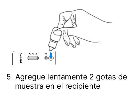 Instrucciones test anticuerpos